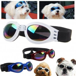 The World's Best Pet Googles With Adjustable Strap